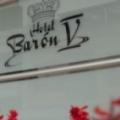 Hotel Baron V