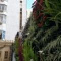 Avenida Jiménez Hotel